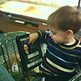 Jared points at a picture on the shopping cart and says 'dada'.